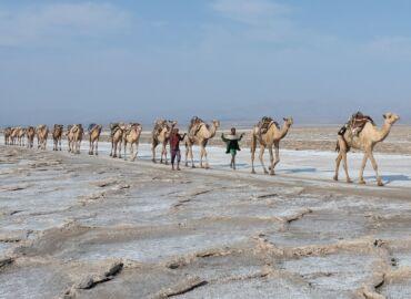 Piramidy Faraonów, pustynia solna i kolebka naszej cywilizacji- Komplet lotów z Berlina do Egiptu i Etiopii za 2047 PLN!