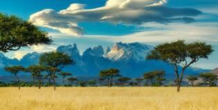 Hakuna Matata! Przeżyj swoją afrykańską przygodę – Loty do Kenii z polskich miast już od 2002 PLN