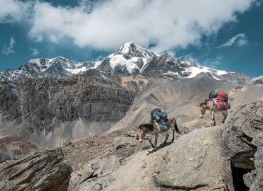 Stambuł, New Delhi i himalajski trekking na granicy z Nepalem – Loty z Warszawy do dystryktu Darjeeling tylko 1782 PLN!