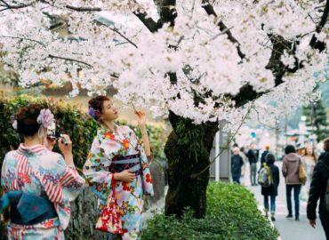 Leć do Japonii w najlepszym terminie: w sezonie kwitnących wiśni – Loty z Pragi do Tokio tylko 1685 PLN!